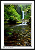 'Weisendanger Falls' ~ Columbia River Scenic Byway