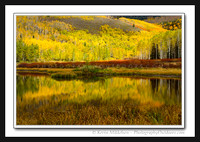'Reflected Aspen Light' ~ Wasatch/Cache Nat'l Forest
