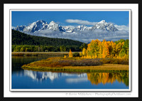 'New Snow in Autumn' ~ Oxbow Bend/GTNP
