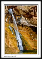 'Desert Oasis' ~ Lower Calf Creek Falls