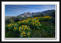 'Ben Lomond Spring' ~ Wasatch Mountains/North Ogden