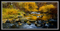 'Black Gold' ~ Ogden River