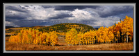 'Aspen Storm' ~ Soapstone Basin/Uinta Mountains