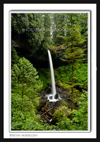 'North Falls' ~ Silver Falls State Park