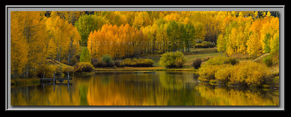 'Reflections of Autumn' ~ Dixie Nat'l Forest