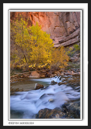 'Virgin River Rapids' ~ Zion Nat'l Park