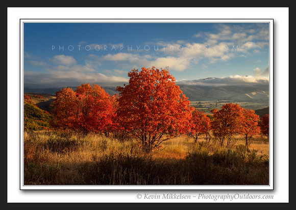 'Trappers Loop Autumn' ~ near Snowbasin