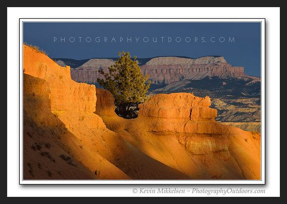 'Scattered Light' ~ Bryce Canyon