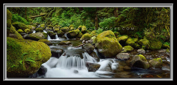 'Oneonta Creek' ~ Columbia River Gorge