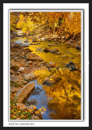 'Golden River' ~ Ogden Canyon