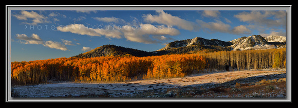 'Beneath Gaurdsmans Pass' ~ Uinta Nat'l Forest