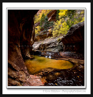 'Autumnal Pool' ~ The Subway/Zion