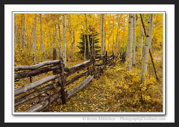 'Ranching Heritage' ~ Uinta Nat'l Forest