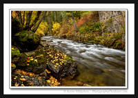 'Autumn on Logan River' ~ Scenic Byway 89