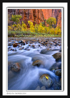 'Colorful Narrows' ~ Zion Nat'l Park